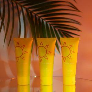 Sun Whip Mineral Sunscreen